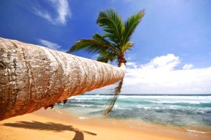 Будьте осторожны при оформлении виз на Шри-Ланку