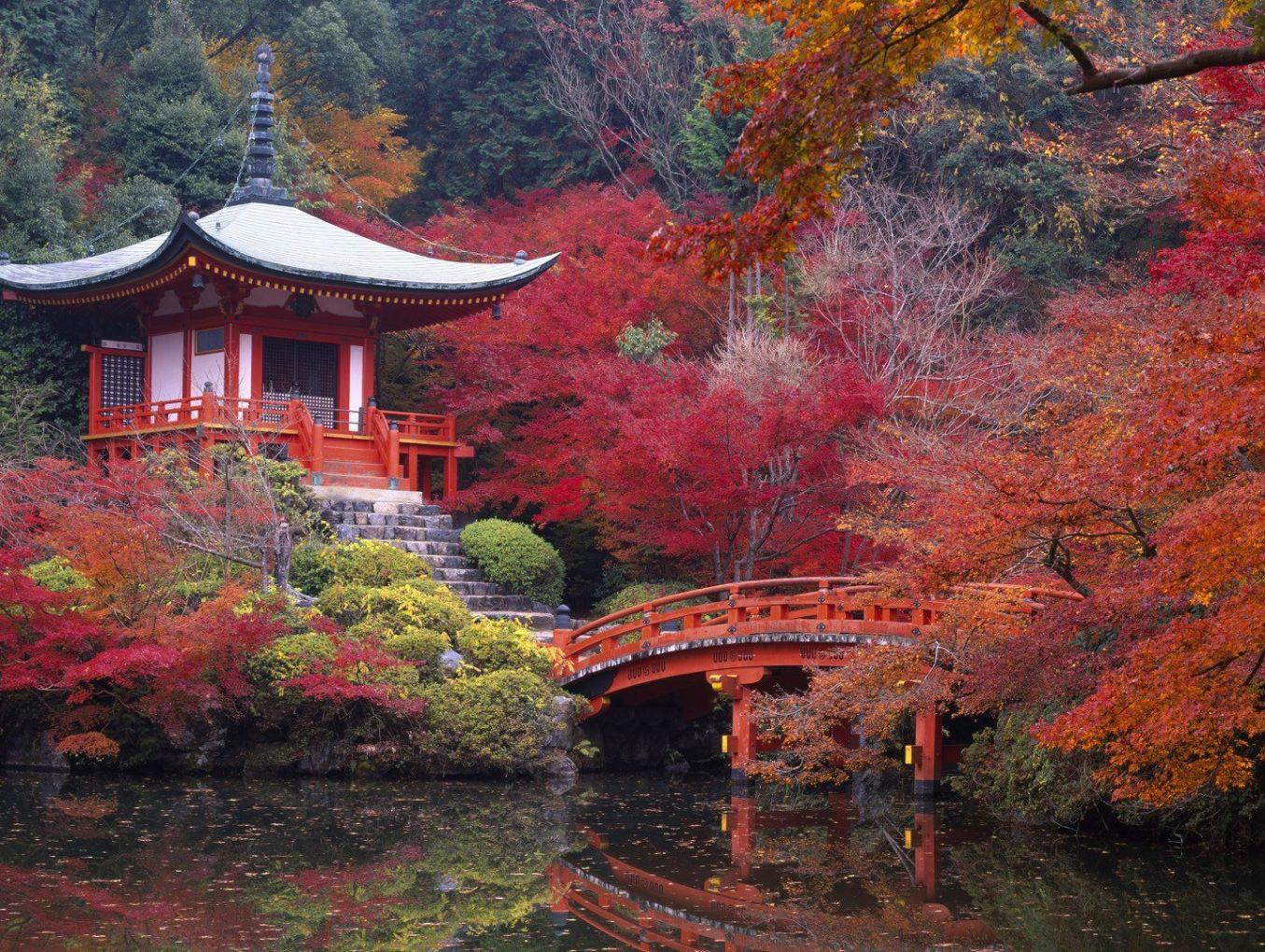 Необычный отель появился в Киото
