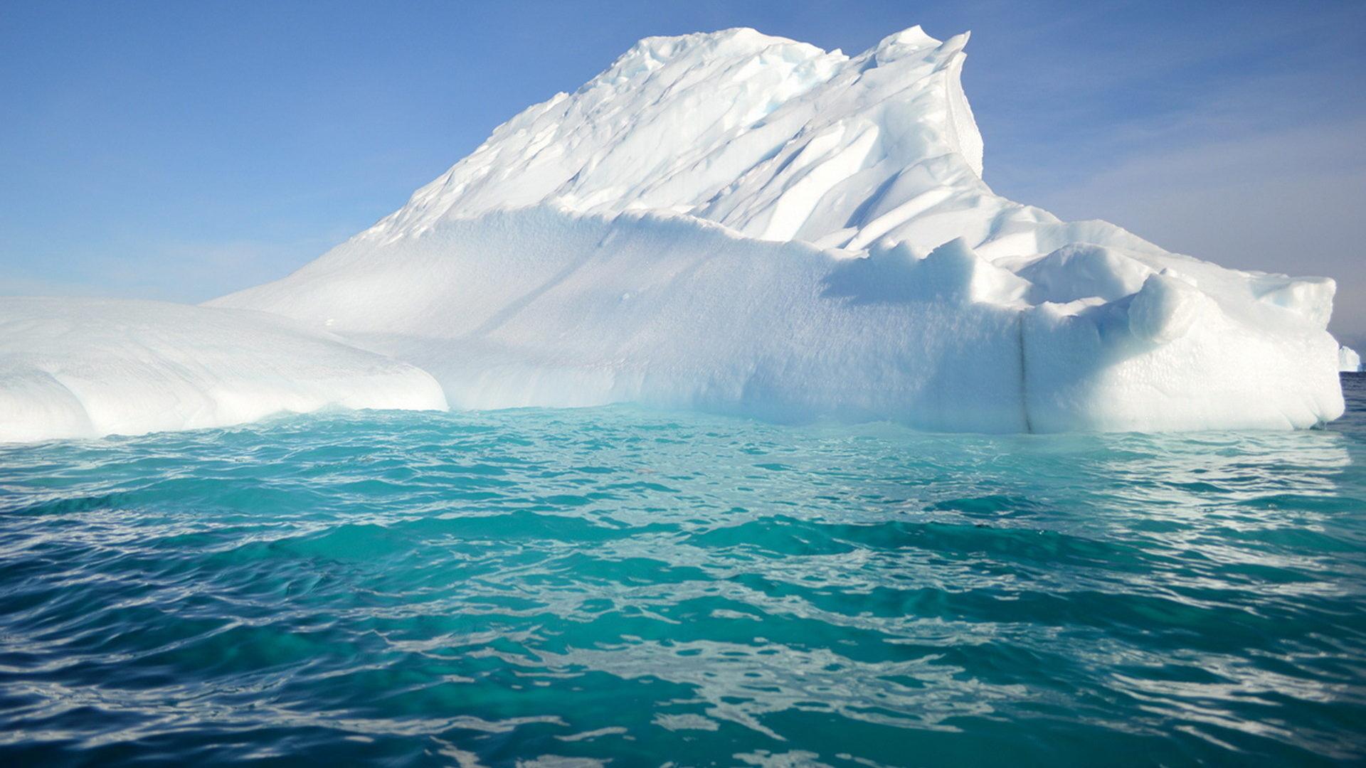 Теплое лето в Антарктиде - риск для всей планеты