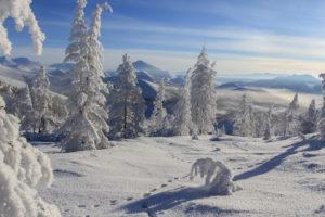 Как обстоят дела с горнолыжным сезоном в Европе?